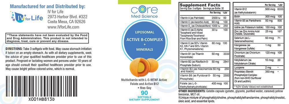 Liposomal Multivitamin with Active B-Complex, Minerals and Antioxidants